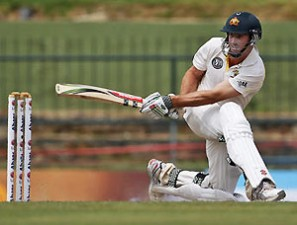 Marsh should have risen in the Ashes