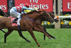 Melbourne Cup result: Who came first, who placed, and who came last