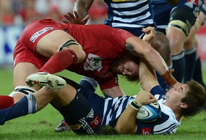 Stormers vs Reds: Super Rugby live scores, blog