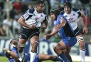 Super Rugby Australian player ratings: Round 10