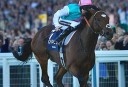 Royal Ascot: Champion Stakes preview