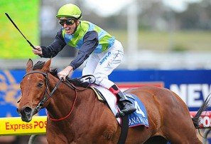 2013 Golden Rose: Horse racing preview, live blog, tips