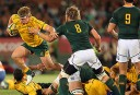 Duane Vermeulen can hold his own with the best