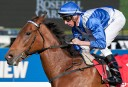 Australian Guineas Day preview