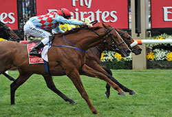 Dunaden wins the 2011 Melbourne Cup