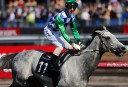 Puissance de Lune to return to training, racing future bright