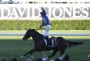 2014 Stradbroke Handicap: Live updates, preview, tips and results
