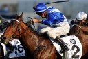 The Championships: 2014 Doncaster Mile full preview and tips