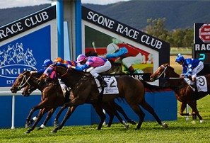 Scone Cup 2017: Form and tips for the great country cup