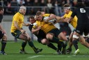 Wallabies forward line report cards