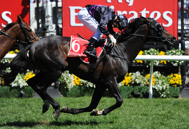 Damien Oliver celebrates winning the 2013 Melbourne Cup