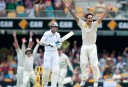 Cricket's 'red zone': Who helps take wickets?