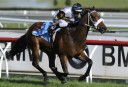 Ascot Super Saturday: Railway Stakes and Winterbottom Stakes preview, selections