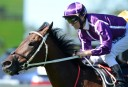The Championships: 2014 Queen Elizabeth Stakes preview and tips