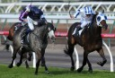 Melbourne Cup 2014: Barrier Draw start time, broadcast details, key information