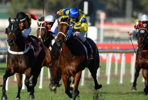 Stradbroke Handicap, Queensland Derby, JJ Atkins live race updates, blog
