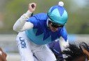 Melbourne Cup 2014: Who came last and why
