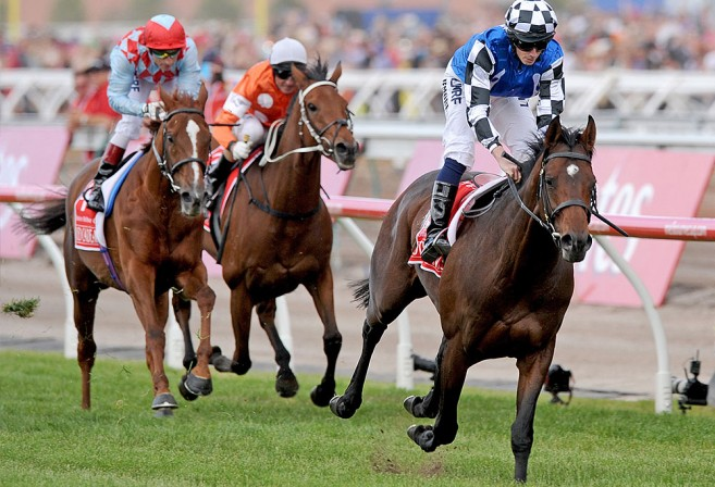 Melbourne Cup 2014 winner Protectionist followed by Red Cadeaux with Who Shot Thebarman in third