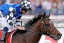 Melbourne Cup winner Protectionist could be retired