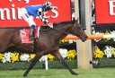 Melbourne Cup 2014: Protectionist – how the race was won