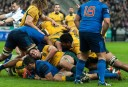 A contested ruck between the Wallabies and France (Image. Tim Anger)