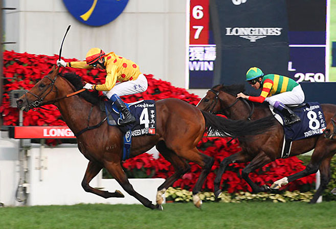 Akeed Mofeed under Douglas Whyte edges Tokei Halo to win the 2013 Hong Kong Cup.