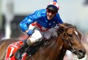 Makybe Diva <br /> <a href='http://www.theroar.com.au/2015/01/30/five-memorable-sporting-moments/'>The five most memorable sporting moments I've witnessed live</a>