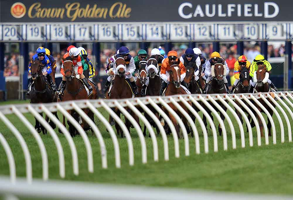 Horses racing at Caulfield racecourse