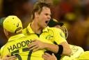 Australia vs New Zealand highlights: International Cricket 1st ODI scores, blog