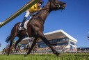 2015 Warwick Stakes preview