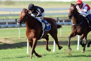 Doomben 10,000 and South Australian Derby: Group 1 previews and tips