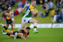 North Harbour Rays vs QLD Country highlights: NRC scores