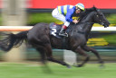 Damien Oliver to fight 20-meeting suspension for reckless riding