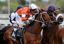 Saturday sure things: Caulfield Cup Day preview