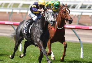 The Everest: The most comprehensive preview on the internet