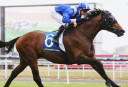 2016 Geelong Cup Guide: The field, race time, odds, preview and prediction