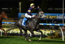 Chairmans Sprint Prize: Buffering and Chautauqua take on the best in Hong Kong