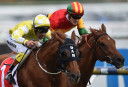 Bel Esprit Stakes 2016 preview and tips