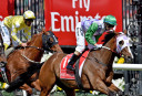 Horse racing in review: 2015