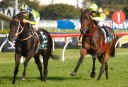 2017 Golden Slipper: Racing live updates, blog, result