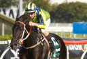 Past the post: Rosehill and Sunny Coast blackbookers