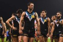 Port Adelaide Power vs Hawthorn Hawks Highlights: AFL live scores, blog