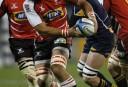 Australia South Africa Super Rugby <br /> <a href='http://www.theroar.com.au/2016/05/31/lions-worthy-african-finalists/'>The Lions: Worthy African finalists</a>