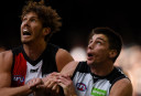 Numbers game: Which AFL teams should rise or fall in 2017