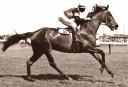 Rising Fast <br /> <a href='http://www.theroar.com.au/2016/09/30/sixpence-none-richer-life-1954-bulldogs-last-won/'>Sixpence none the richer: Life in 1954 when the Bulldogs last won</a>