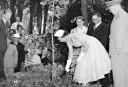 Queen Elizabeth II visits Australia <br /> <a href='http://www.theroar.com.au/2016/09/30/sixpence-none-richer-life-1954-bulldogs-last-won/'>Sixpence none the richer: Life in 1954 when the Bulldogs last won</a>