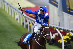 Winx leading into Spring with first ever trial win