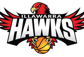 illawarra_hawks_logo