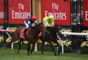 2016 Melbourne Cup: Who finished second?