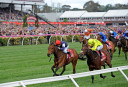 Melbourne Cup: Out of Order as Almandin storms to deserved favouritism